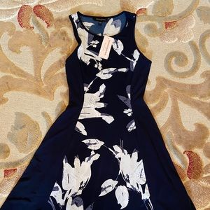 Banana Republic Navy Blue Fitted Dress